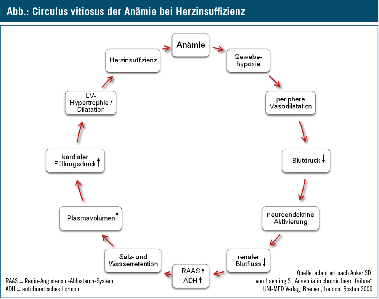 aldosteron antagonisten bei herzinsuffizienz