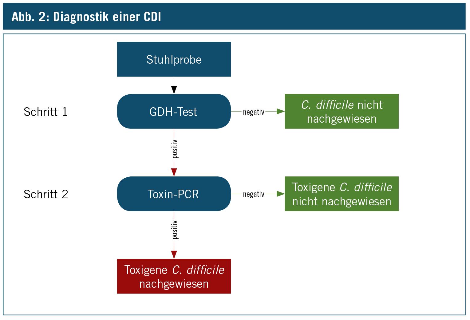 Clostridium Difficile Diagnostische Und Therapeutische
