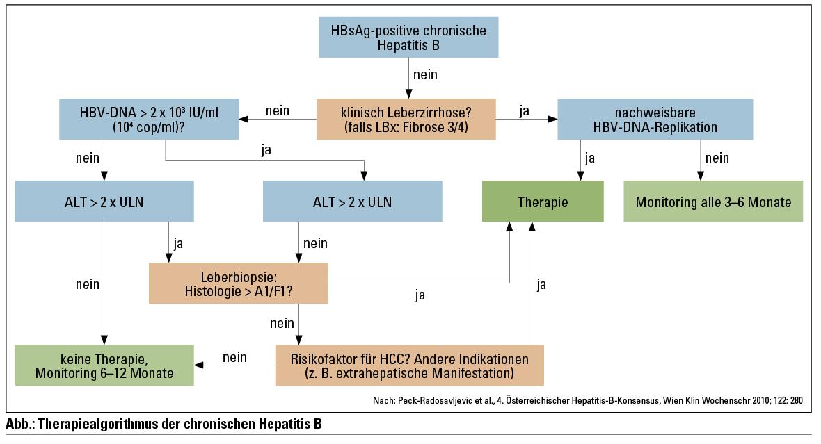 hepatitis b diät