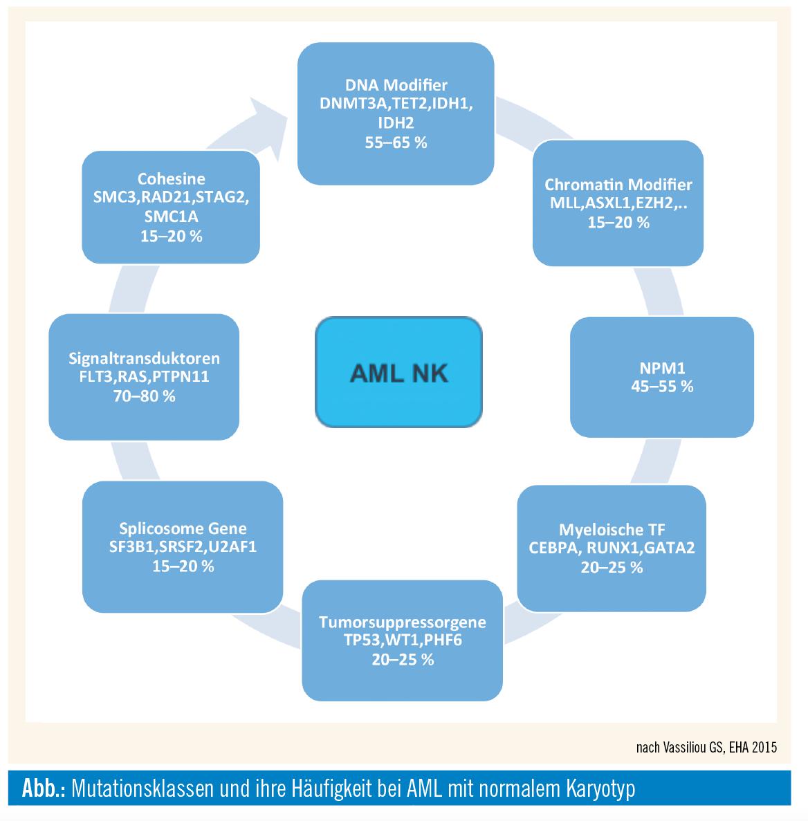 outlet starke verpackung akzeptabler Preis Akute myeloische Leukämie (AML) – neue Therapieprinzipien ...