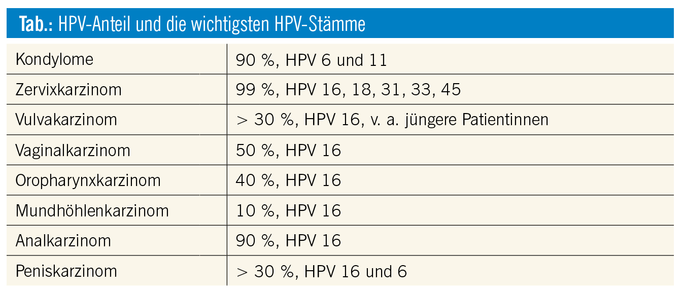 hpv high risk stamme)