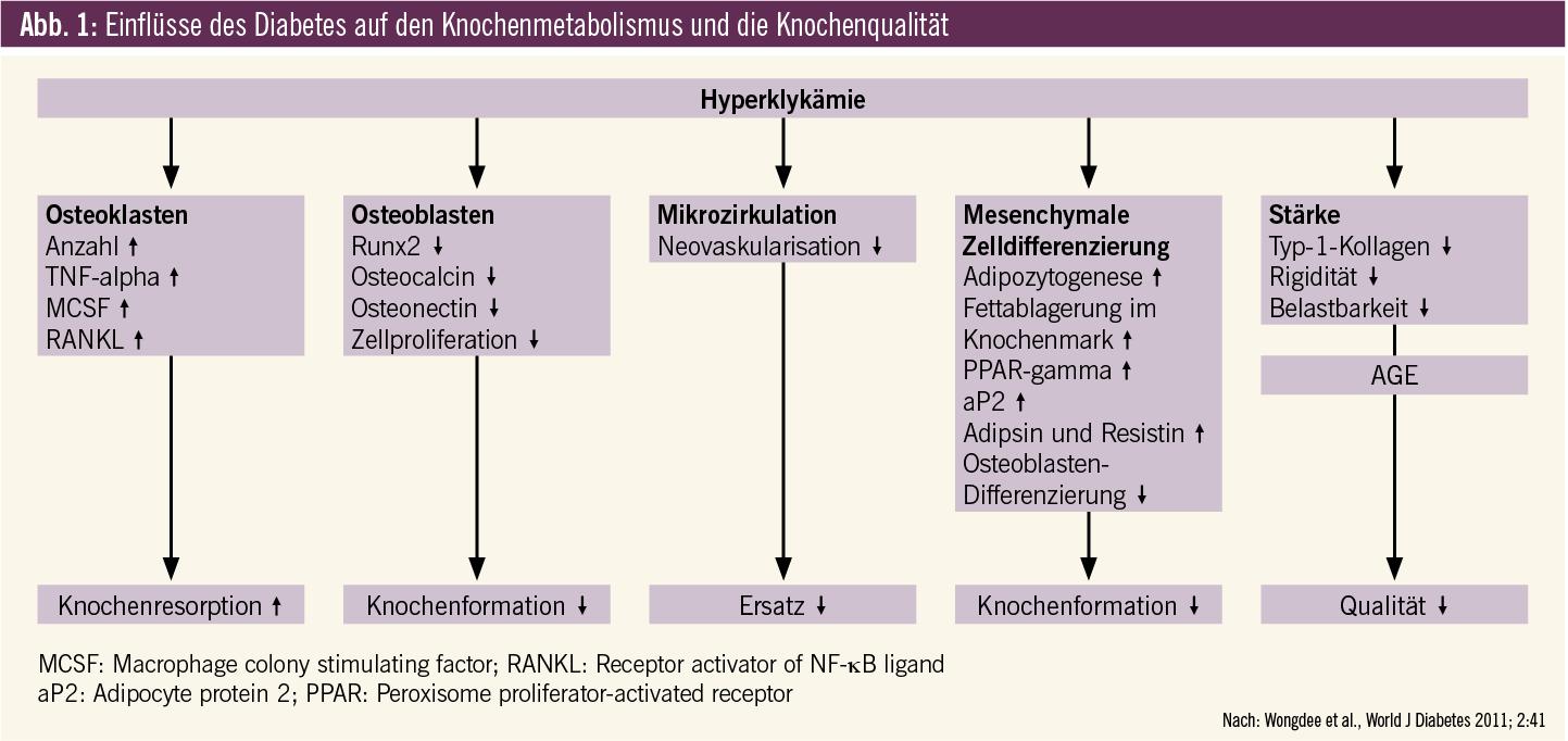 Therapeutische Konsequenzen aus diabetologischer Sicht ...