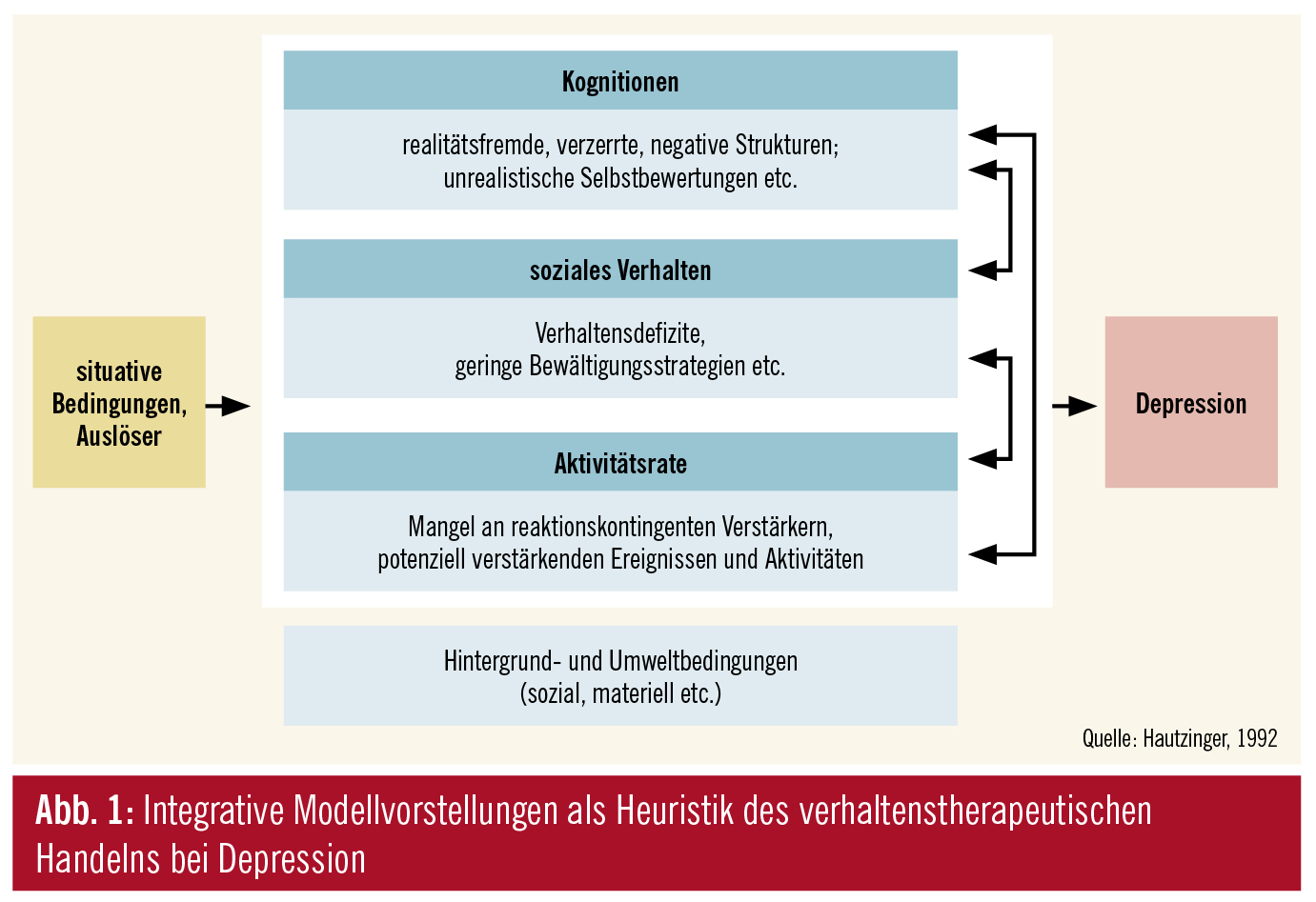 verhaltensanalyse mikroanalyse makroanalyse