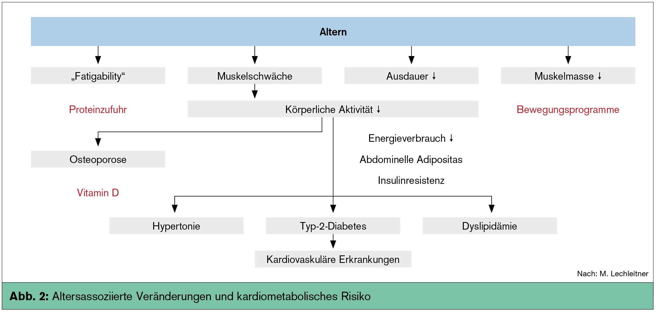 metabolisches alter tanita
