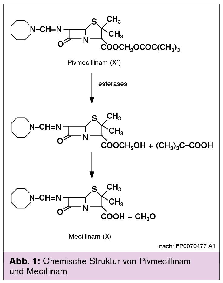 Trimox antibiotic 625mg thuốc trimoxtal 875-125mg