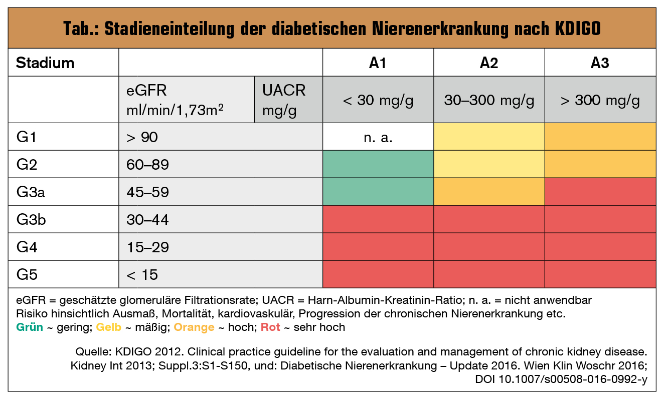 Wunderbar Anatomie Und Physiologie Der Chronischen ...
