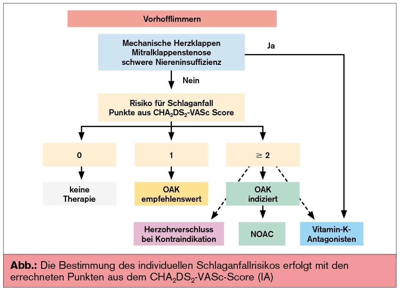 Neue ESC-Leitlinien: Vorhofflimmern   Universum Innere Medizin ...